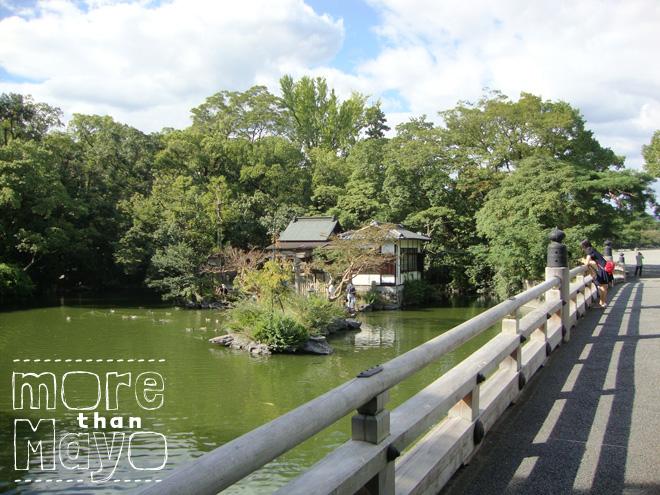 Eigenaardigheden en awesomeness - www.morethanmayo.com/eigenaardigheden-en-awesomeness | Image: Japanese garden, copyright: More than Mayo