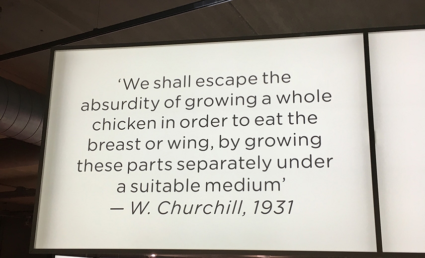 Feed your mind: Meat the future - an exhibition about the future of meat - www.morethanmayo.com/meat-future | image: quote Churchill, credits: More than Mayo foodconcepts