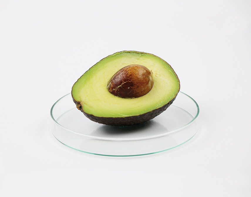 Feed your mind: brainfood: Focus food - www.morethanmayo.com/brainfood-focus-food | image: focus food avocado, credits: Foodierecords - www.foodierecords.nl